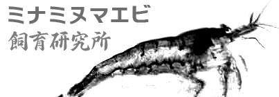 ミナミヌマエビ飼育研究所